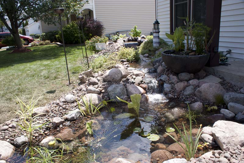 Pondless to Pond
