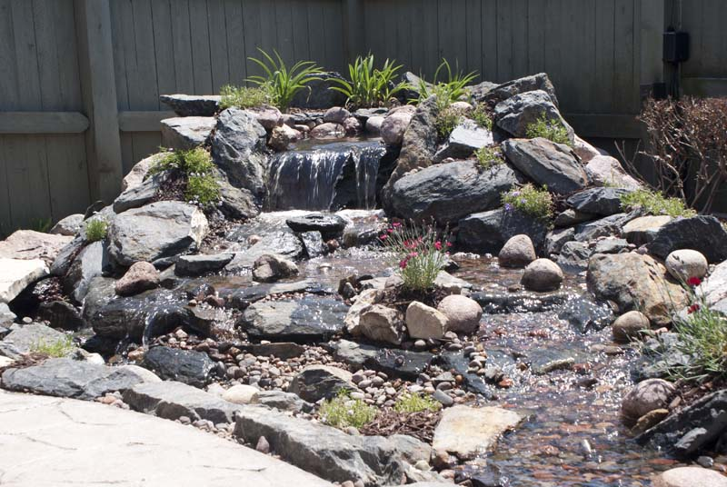 Pond to Pondless