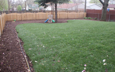 New Backyard Sod & Mulch