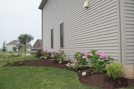 Side of House Landscaping